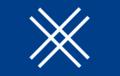 Sinise Äratuse lipp.png