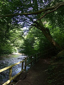 Sirhowy Valley Country Park Path - geograph.org.uk - 1418227
