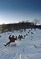 Skijimi.jpg