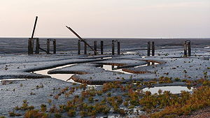 Snettisham RSPB reserve - The Jetty