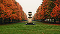 Soon autumn leaves will fall... (Explore) (6116316716).jpg