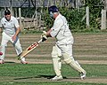 Southwater CC v. Chichester Priory Park CC at Southwater, West Sussex, England 075.jpg