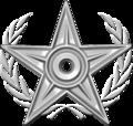 Special Silver Barnstar.png
