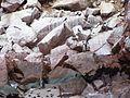 Spheniscus humboldti and Larosterna inca, Islas Ballestas 1.jpg
