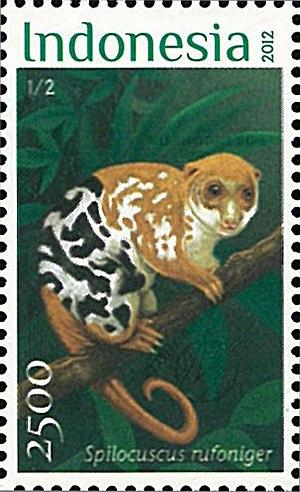 Black-spotted cuscus - Image: Spilocuscus rufoniger 2012 stamp of Indonesia