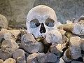 St Leonard's church ossuary, Hythe - skull and femurs.jpg