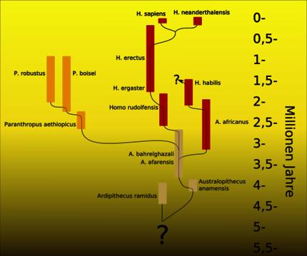 imenovati dvije metode datiranja fosila pronađena suradnica na mjestu za upoznavanje