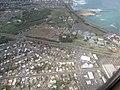 Starr-100218-2632-Clusia rosea-habitat aerial view Maui Community College-Kahului-Maui (25010380565).jpg