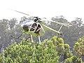 Starr-120627-7684-Eucalyptus sp-habitat and helicopter in flight-Hawea Pl Olinda-Maui (25067385892).jpg