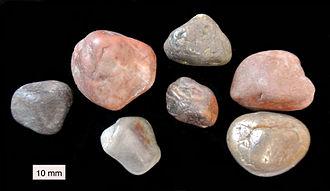 Gastrolith - Gastroliths from Jurassic strata near Starr Springs, Utah.