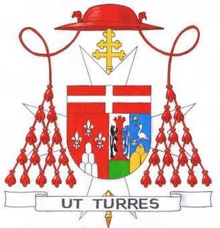 Mario Nasalli Rocca di Corneliano Catholic cardinal