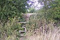 Steps and Stile towards Nickle Farm orchard - geograph.org.uk - 1490316.jpg
