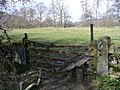 Stile into Bank Wood - geograph.org.uk - 759398.jpg