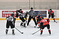 Stingers Hockey 2011 (5376130899).jpg
