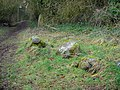 Stone Circle - geograph.org.uk - 683527.jpg