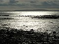 Strangford Lough near Greyabbey - geograph.org.uk - 1040160.jpg