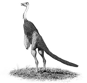 Struthiomimus, an ostrich-like theropod dinosaur.