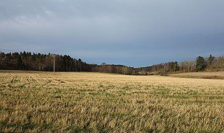 Stubble fields in Brastad.jpg