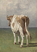 Study of a cow by Rosa Bonheur.jpg