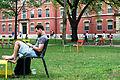 Studying in Harvard Yard.JPG