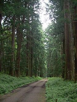 Tochigi (prefecture)