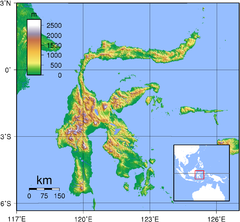Sulawesi Topography.png
