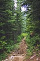 Summit Lake Trail 1177 — 001.jpg