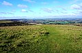 Summit of Harting Beacon Hilltop Enclosure.jpg