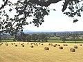 Sundorne Farm - geograph.org.uk - 128485.jpg