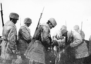 Invasion of Åland - Swedish troops disarming the Russians in Degerby village