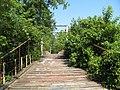 Swinging Bridge (525335723).jpg