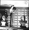 T. Dale Stewart Examining Skull.jpg