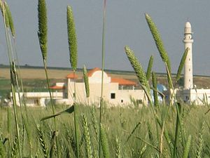 Taibe, Galilee - Taibe village view