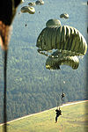 Tailgating in the Sky, Paratroopers Jump for Joy DVIDS293756.jpg