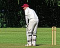 Takeley CC v. South Loughton CC at Takeley, Essex, England 095.jpg
