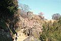 Taketa, Oita Prefecture 878-0013, Japan - panoramio (1).jpg