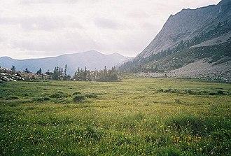 Triple Divide Peak (Tulare County, California) - Image: Tamarack Mdw