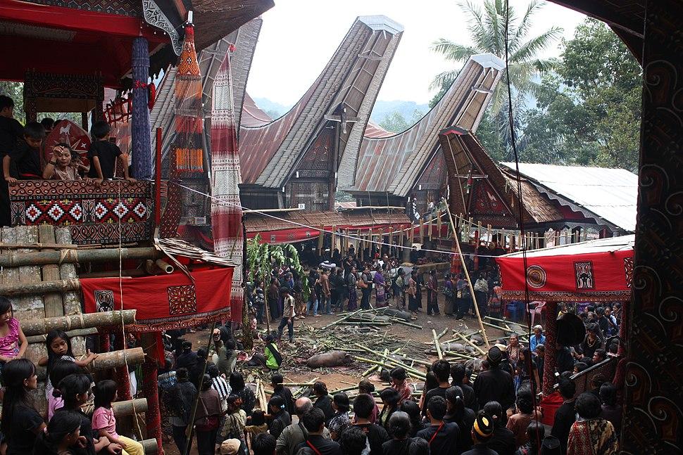 Tana Toraja, Salu funeral (6823105668)