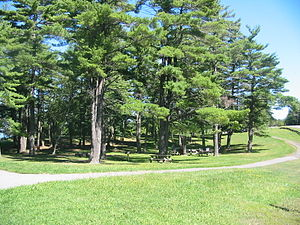 John Boyd Thacher State Park - Picnic Area