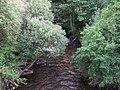 The Rhondda river at Ynyswen - geograph.org.uk - 958578.jpg