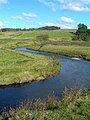 The River Ayr - geograph.org.uk - 569702.jpg