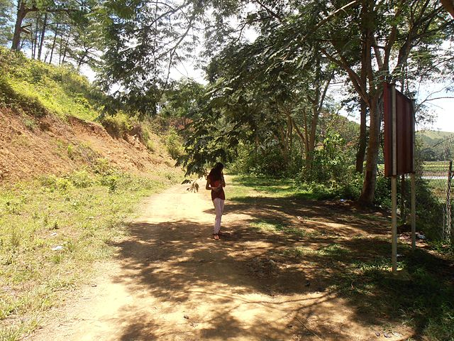 Parco nazionale di Keibul Lamjao