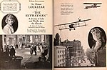 The Skywayman (1920) - 1.jpg