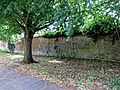 The Stow, Harlow, Essex, England - brick wall and tree.jpg