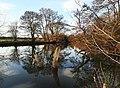 The Tyne at Haddington - geograph.org.uk - 638764.jpg