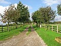 The Western Driveway Of Providence Hill Farm - geograph.org.uk - 263912.jpg
