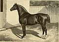 The breeds of live stock, and the principles of heredity (1887) (14758131436).jpg