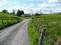 The road to Burnfoot Farm - geograph.org.uk - 843202.jpg