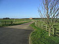 The road to Gallowmoor Farm - geograph.org.uk - 327384.jpg