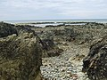 The rugged wave-cut platform facing the Creigiau reefs - geograph.org.uk - 1407185.jpg